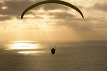 Paraglider flying in the sky over an ocean by Panoramic Images