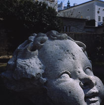 Close-up of a statue, Salzburg, Austria von Panoramic Images