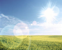 Sun shining over a field by Panoramic Images