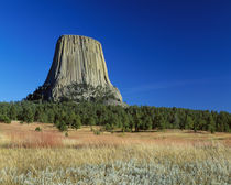 Devils' Tower, blue sky, Devils' Tower National Monument, Wyoming, USA. by Panoramic Images