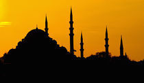Silhouette of a mosque, Blue Mosque, Istanbul, Turkey by Panoramic Images