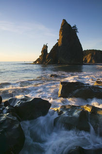 Sea stack and ocean surf on rocky Rialto Beach by Panoramic Images