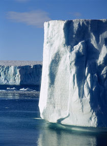Iceberg floating on water by Panoramic Images