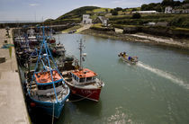 Fishing Boats, Helvick Port, Ring Gaelic Area, County Waterford, Ireland von Panoramic Images