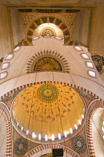 Low angle view of a palace, Topkapi Palace, Istanbul, Turkey by Panoramic Images