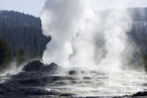 Geyser Steaming by Panoramic Images