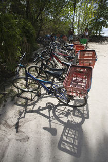 Bicycles parked on the beach von Panoramic Images
