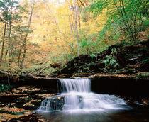 USA Pennsylvania Benton von Panoramic Images