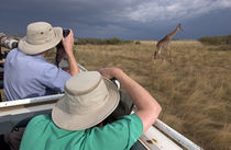 Rear view of two safari photographers filming a giraffe by Panoramic Images