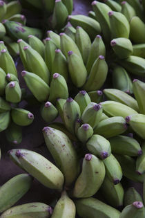 Close-up of bananas in a market, St. Paul, Reunion Island von Panoramic Images