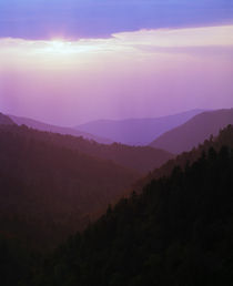 View of misty Smoky Mountains from overlook, sunset, Tennessee, USA. by Panoramic Images