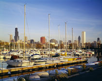 Boats in a row at a marina, Chicago, Illinois, USA by Panoramic Images
