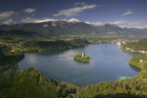High angle view of a lake, Lake Bled, Julian Alps, Bled, Gorenjska, Slovenia von Panoramic Images