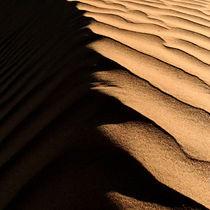 namibian desert Africa,namib desert. by james smit