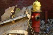 red and yellow hydrant in detroit by ushkaphotography