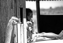 Madagascar von Margarida Alicja Guerra
