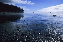 Ruby Beach by Barbara Magnuson & Larry Kimball