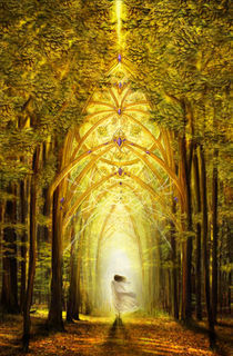 Path of Light von Claudia Flor