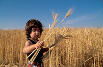 Israel, a boy preparing for Shavuot holiday by Hanan Isachar
