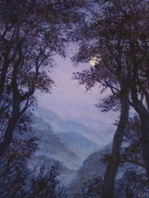 Innere Natur/ Blaue Nacht  by Ute Hegel