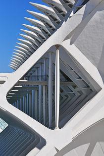 Valencia, Museo de las Ciencias Príncipe Felipe by Frank Rother