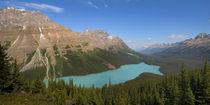 Peyto Lake by Ben Bolden