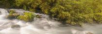 Marian River by Ben Bolden