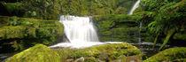 McLean Falls by Ben Bolden