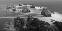 Nugget Point, New Zealand by Ben Bolden