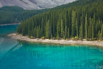 The Color of Lake Louise by Lee Rentz