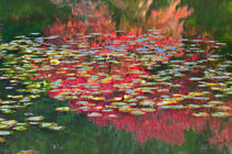 Seattle-japanese-garden-in-autumn