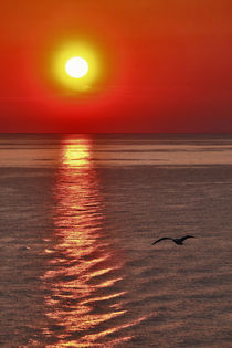 Sunset by Albin Bezjak