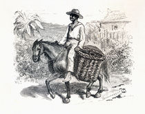 Charcoal Seller in Brazil, c. 1879 by Laeti Images