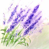 'Lavendel (Fleur de lavande)' von Atelier Ziehr