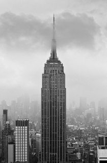 Empire State von Cameron Booth