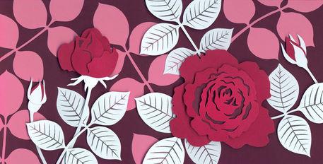 Rose-faire-part