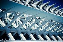 Calatrava Design by Luis Alfonso Lopez