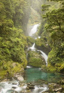 Mackay Falls in the Arthur Valley, Milford Track von Ross Curtis