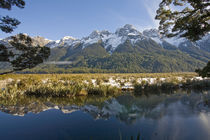 Mirror-lakes-in-the-eglinton-valley-1