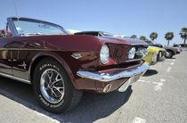Mustang von Peter BABILOTTE