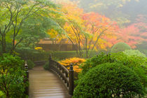 Bridge-and-teahouse-in-fog