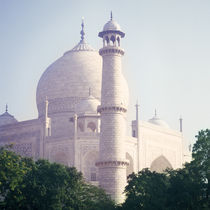 Morning Taj Mahal, India by Eugene Zhulkov