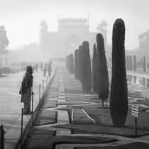 Misty morning, India von Eugene Zhulkov
