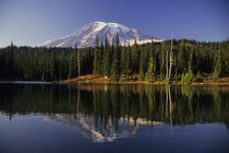 Reflection Lake, Mount Rainier in Fall von Wolfgang Kaehler