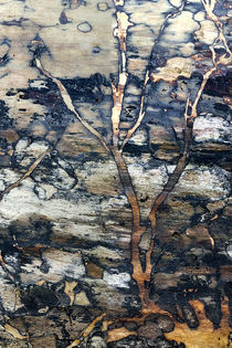 Tree Log_v2 von Dennis Tarnay Jr