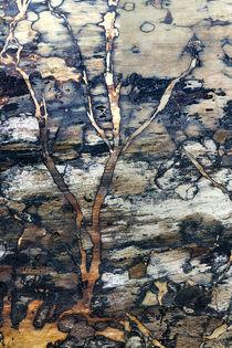 Tree-log-v1