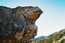 Lizards Mouth Rock, California by Melissa Salter