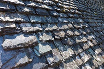 Ancient Slate Roof by Joel Morin