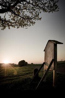Morgenstimmung am Vogelsberg XVIII von Thomas Schaefer