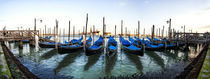 A Panorama of Parked Gondolas von Richard Susanto